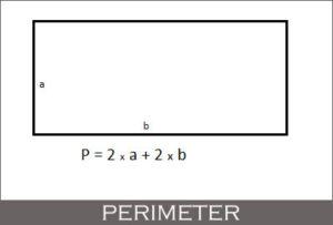 Perimeter of rectangle