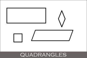 Quadrangles (Geometric Shape)