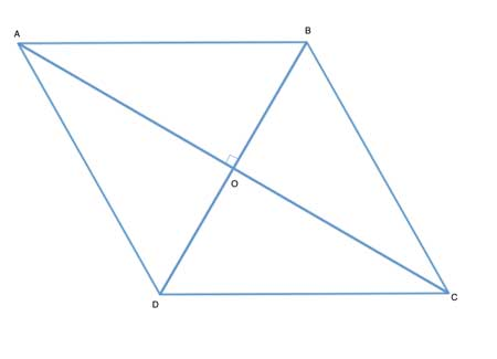 rhombus with diagonals